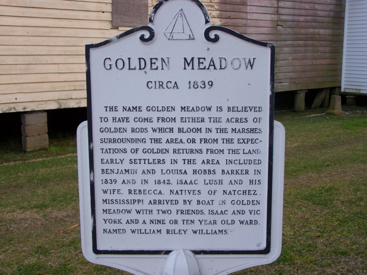 Golden Meadow Sign